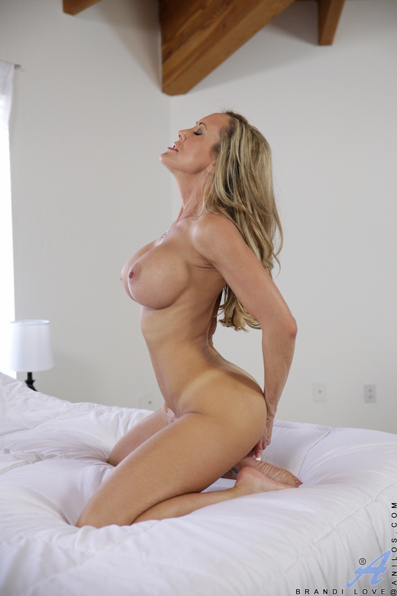 brandi love hot boobs and pussy