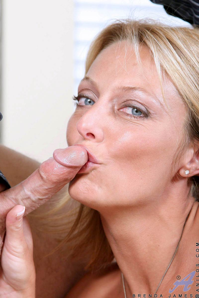 Anilos Brenda James receives a thorough pounding in her tight milf twat