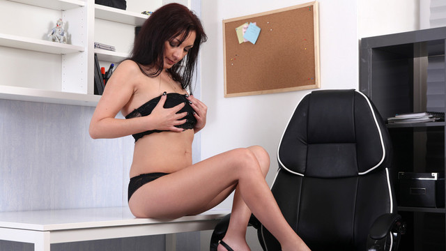 The Sexy Office Lady - Anilos.com